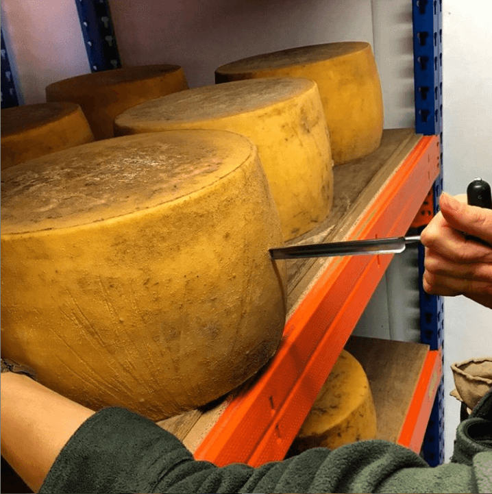 St Andrews Farmhouse Cheddar is 'The Big Cheese' at The Royal Highland Showcase